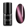 NeoNail gel lak Cat Eye 6 ml - Cymric